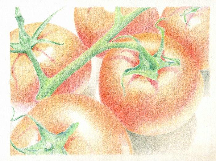 tomato_012