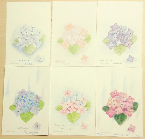 塗り絵 紫陽花
