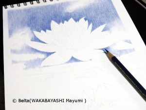 _waterlily_01