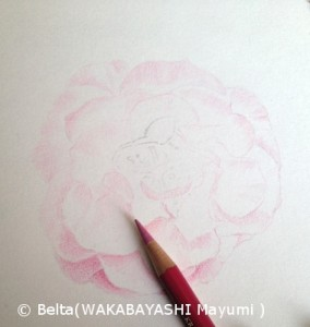 2014_04_15_rose_02_s