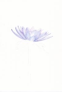 2015_04_15_lotus_01