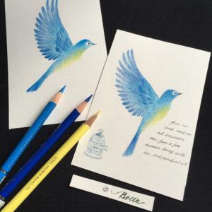 2016_05_10_bird_01_s