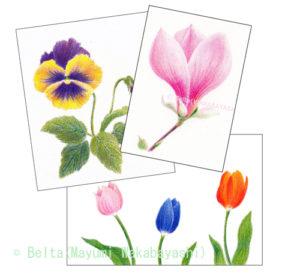 spring_01_05