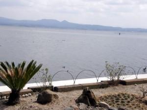 窓からの眺め 宍道湖が広々