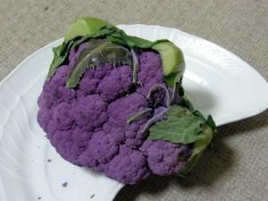 紫のカリフラワー