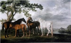 河辺の馬の親子