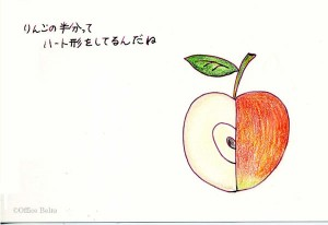 りんごの半分