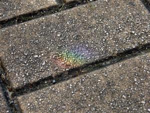 駐輪場の虹